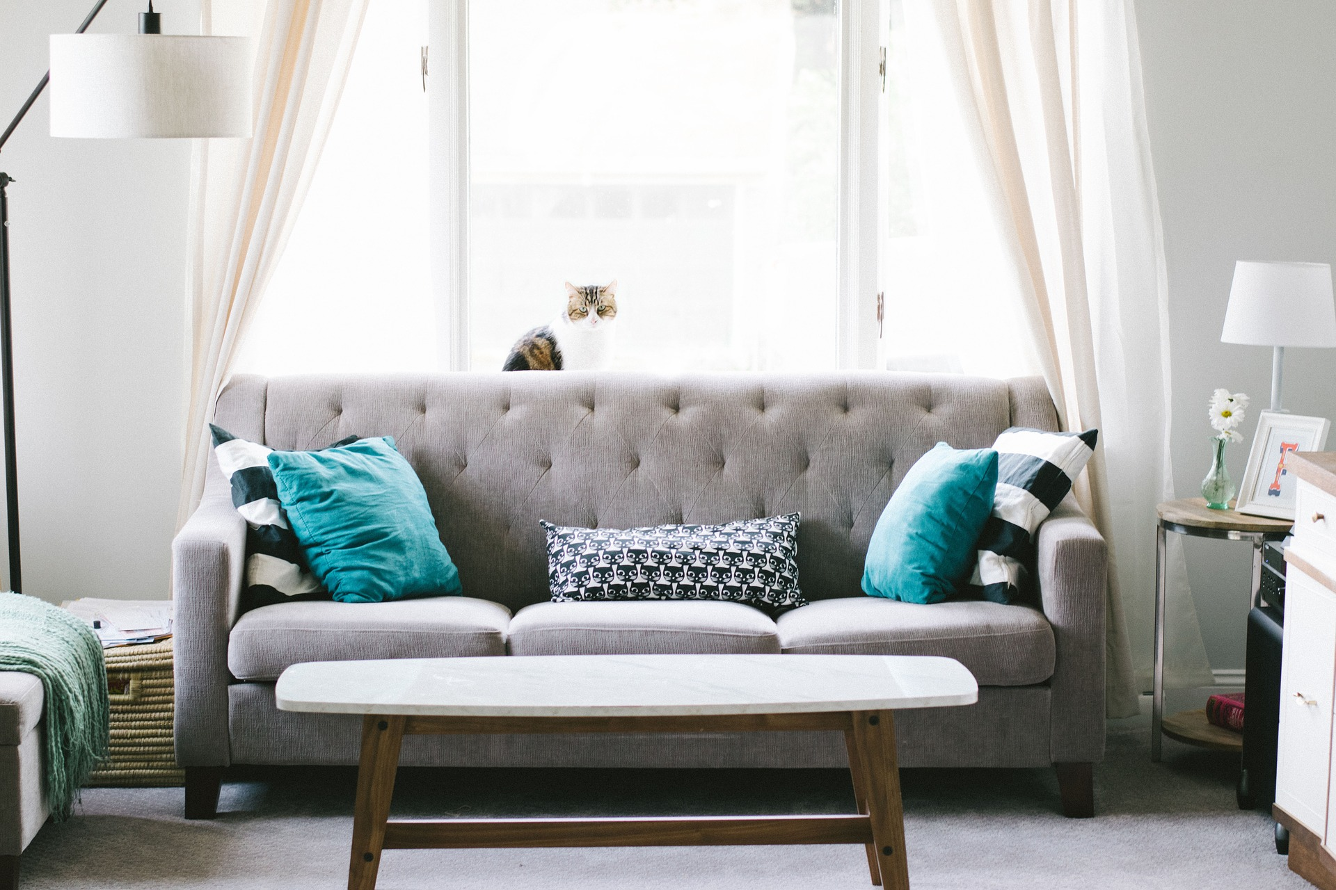 <!DOCTYPE html> <html> <head> </head> <body> <p>When it comes down to ordering your brand new sofa, how do you know which sofa filling is the best one for you?</p> <p>Fun fact – The most common filling for seat cushions is foam.</p> <h4>When selecting a sofa what filling is best for you?</h4> <p>Your sofa seat cushions are made up of one of three F's: Foam, Feather or fibre. In fact, most sofas are made up of all three of these factors to a certain degree. All these factors will provide different levels of comfort. </p> <p> </p> </body> </html>